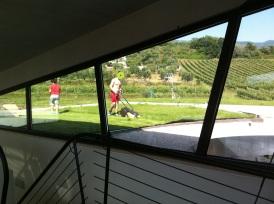 tetto-giardino1
